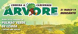 http://xistarca.pt/eventos/corrida-da-arvore