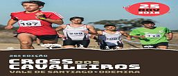 http://www.optimeios.com/back/fotos/aabe2244/documentos/regulamento_vale_santiago.pdf