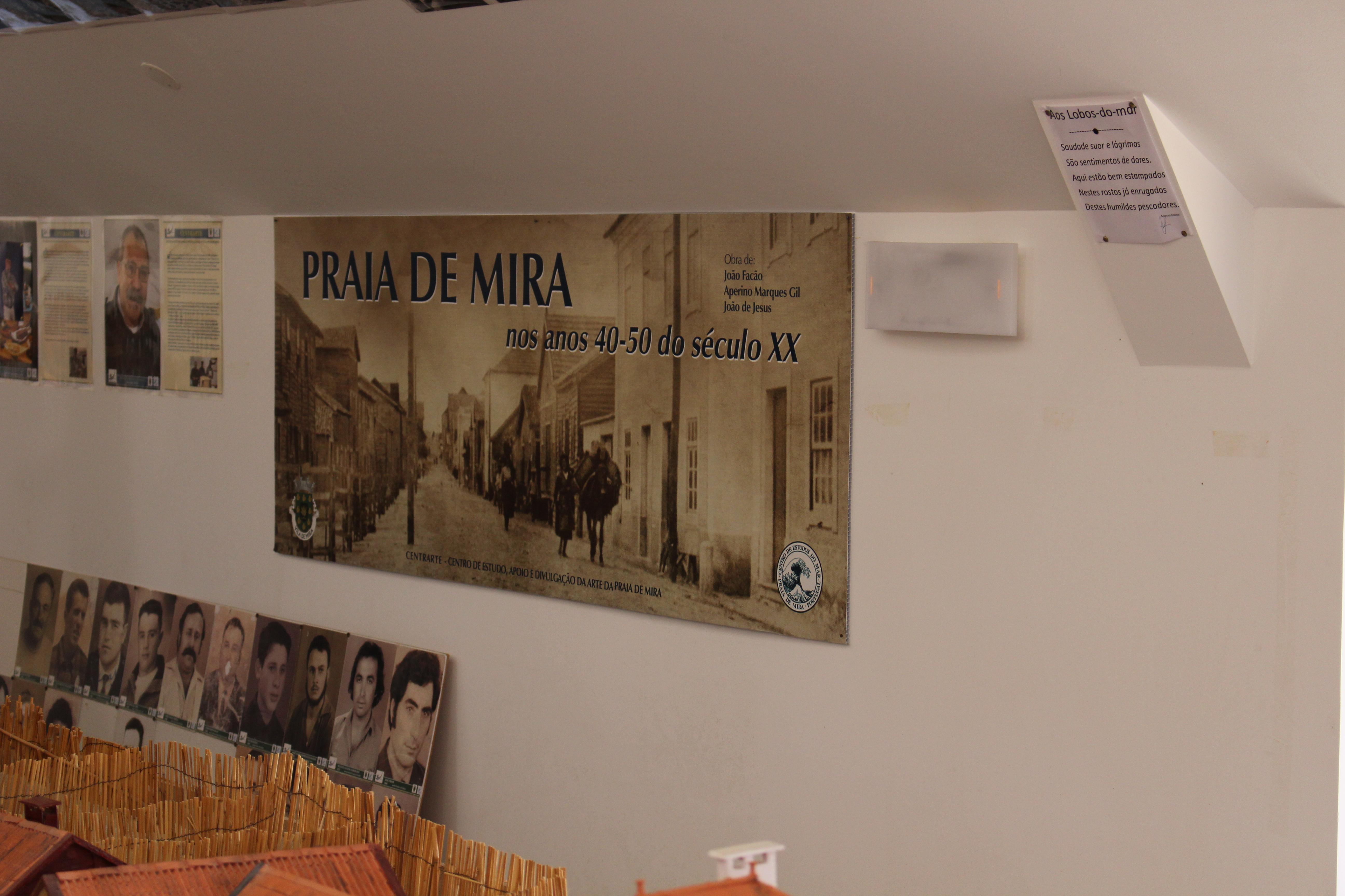 Encontro Nacional 7Outubro- Praia de Mira 2017 - Página 3 IMG_2500